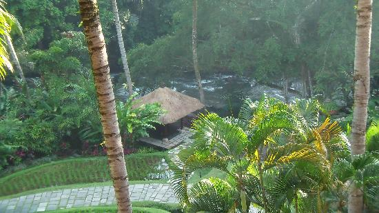 Sayan, Indonesia: View from balcony
