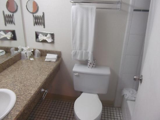 Mision Express McAllen : bathroom