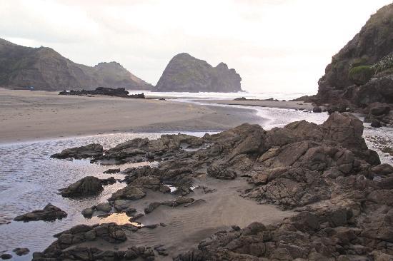 Piha Beach: Near Lion Rock
