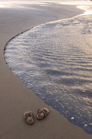 Piha Beach: No need for shoes