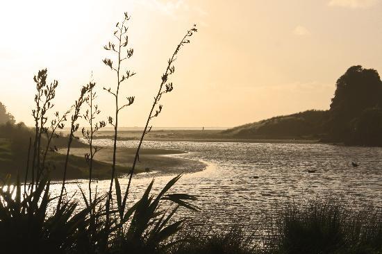 Piha Beach: Ducks at sunset
