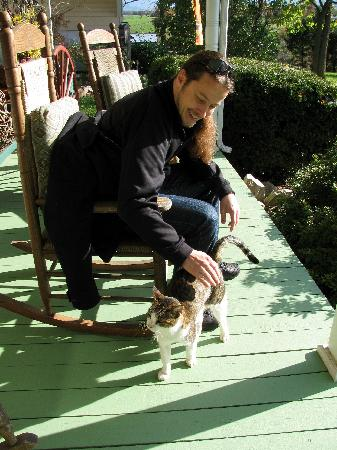 Piney Hill Bed & Breakfast: hanging out with the cats