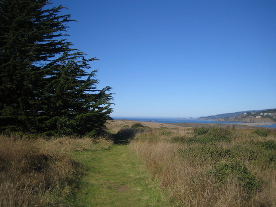 Gualala Point Regional Park: walk leading up to coastal trail