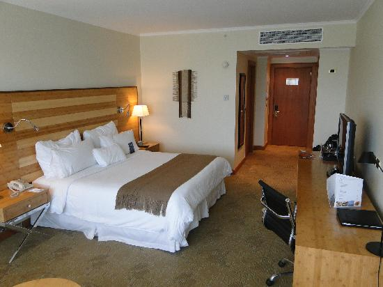 Sonesta Hotel Osorno: Room