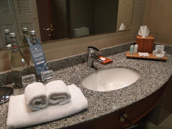 Sonesta Hotel Osorno : Bathroom