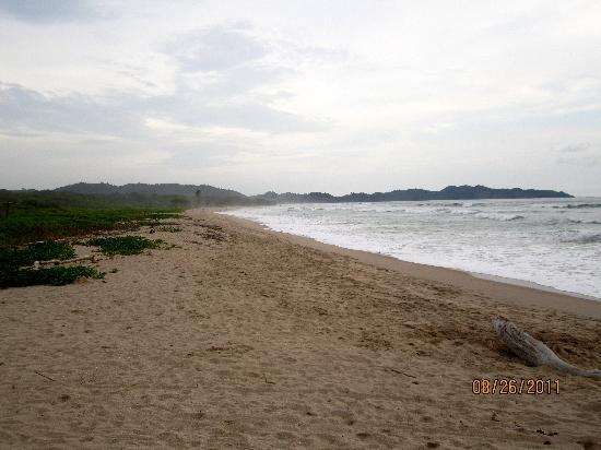Gilded Iguana Hotel: The Beach!