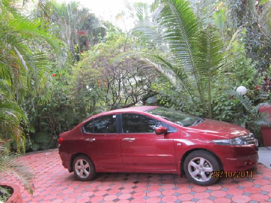 Palm Grove Cottages: parking is ample. My car loved the ambience