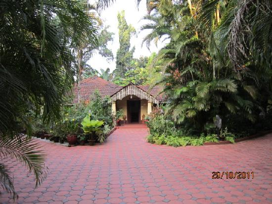 Palm Grove Cottages : reception as seen from my lense