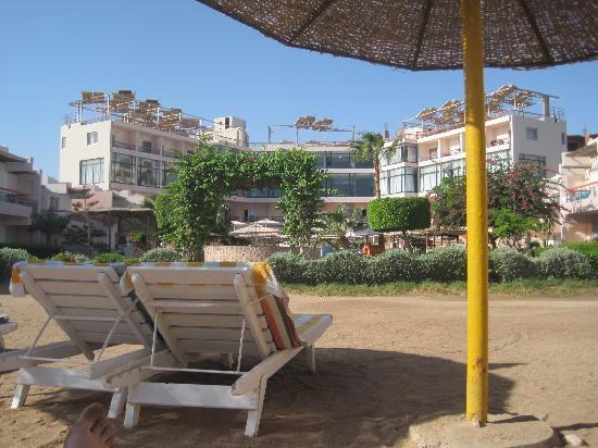 Beirut Hotel: hotel