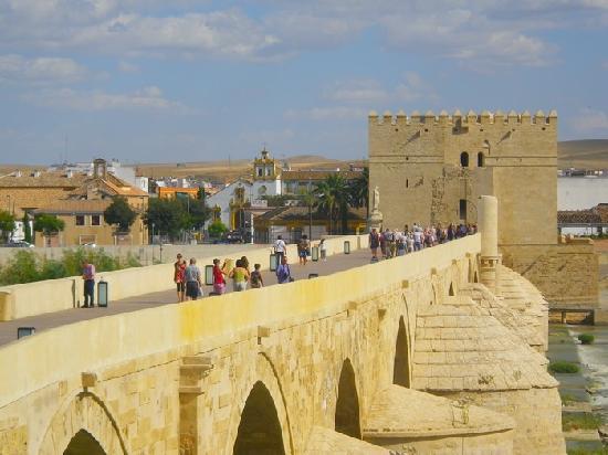 Pont Romain Cordoue Obrazek Zarizeni Mezquita Cathedral