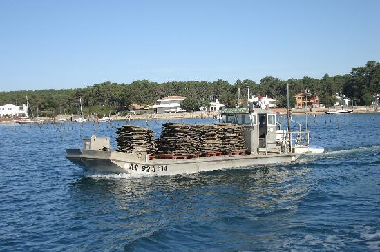 Union des Bateliers Arcachonnais : un bateau d'ostréiculture