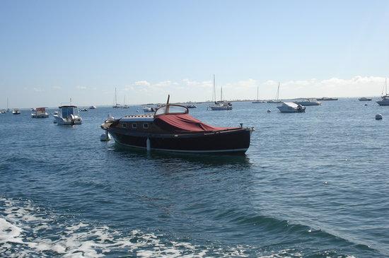 Union des Bateliers Arcachonnais: une pinasse (bateau typique d'Arcachon)
