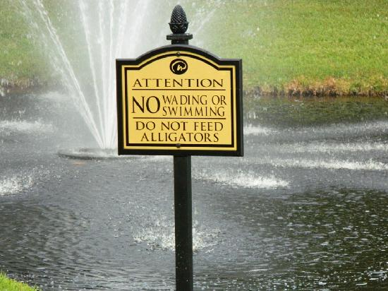 Clarion Inn Lake Buena Vista: Lac et son drôle d'avertissement