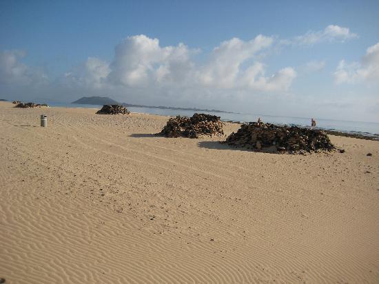 Parque Natural de Corralejo: Parque Natural de Corralego - 2
