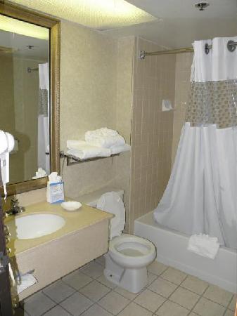 Baymont Inn & Suites Warren MI: Older but clean bathroom