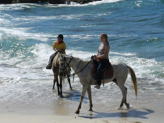 Arikok National Park, Aruba: On the Beach with kids in private rides