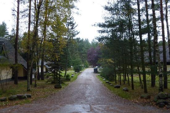 Van der Valk Naturresort Drewitz : Forest feeling...