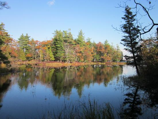 The Lamplighter Bed and Breakfast of Ludington: Beautiful Ludington State Park