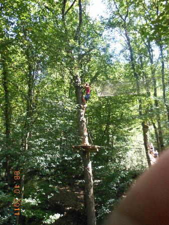 Parc En Ciel : Yes, you had to climb a tree to get to the rope bridge!