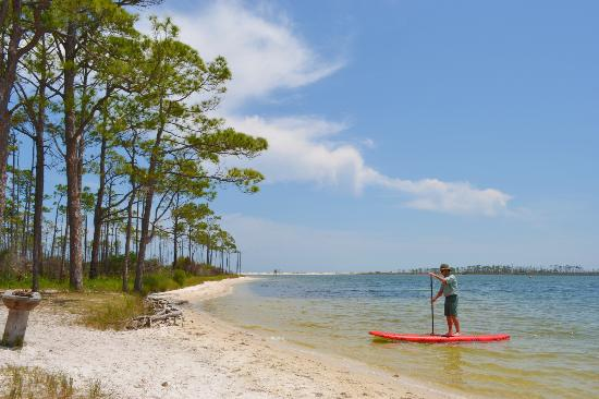 Paddle Board Rentals Area Avialable At Big Lagoon State
