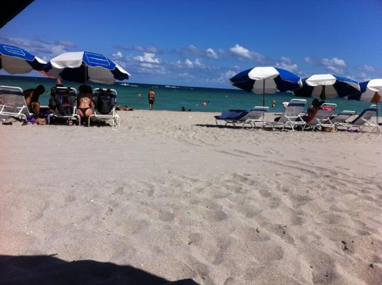 Hollywood Beach Marriott: great beach, water is wonderful and the view?  see the photo