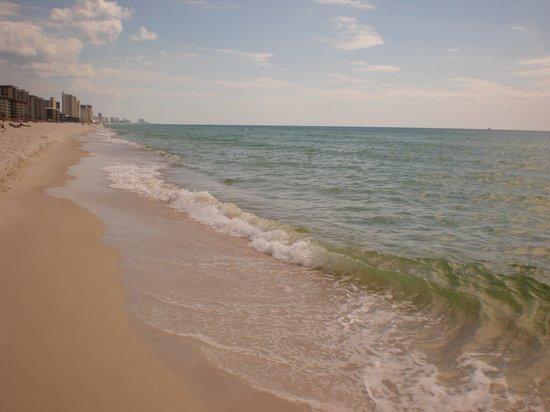Ocean Towers Beach Club: The awesome beach.