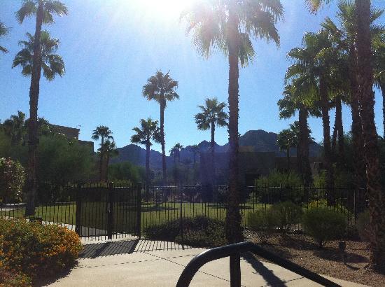 Hyatt Regency Indian Wells Resort & Spa: mountain view from pool