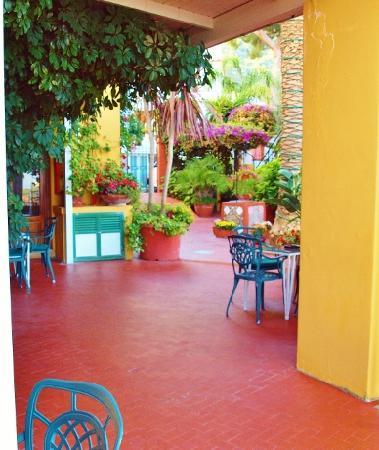 Hotel Pensione Monti : giardino fiorito