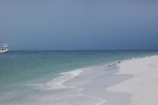 Anna Maria, FL: The water