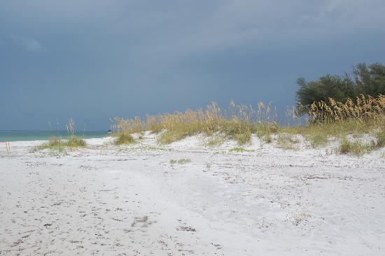 Anna Maria, FL: A little ways from shore