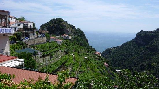 Ristorante Antico Borgo: More view