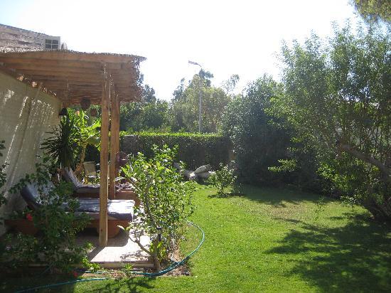 Lagoon Villa Apartments : Garden