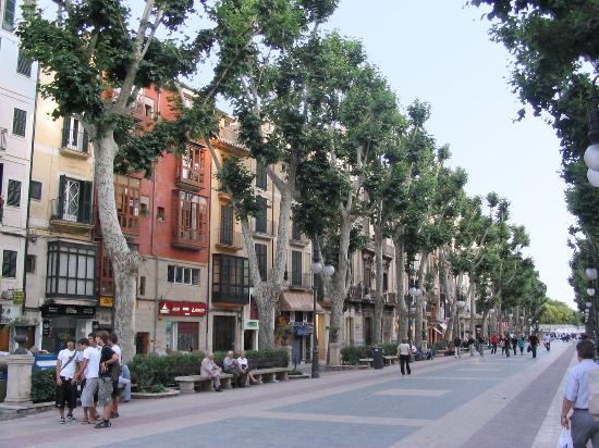 Hotel Sant Jaume Palma De Mallorca