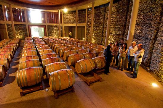 Hotel la casona de vina matetic prices guest house for Bodegas de jardin chile