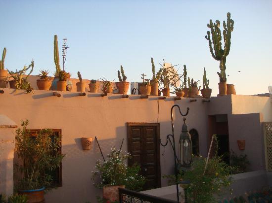 Riad Bab Janna: La terrasse pour le petit déjeuner