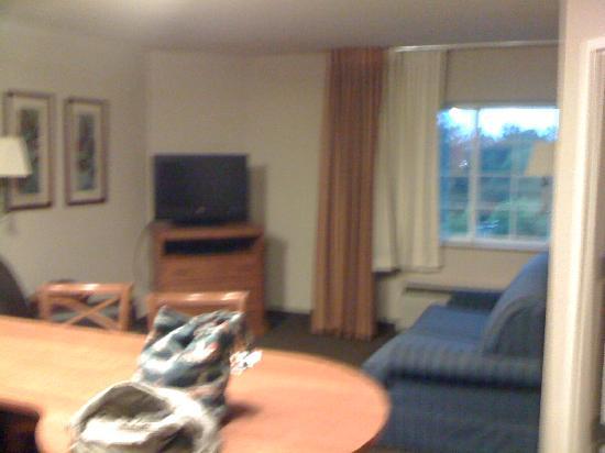 Candlewood Suites Glen Allen : Main room (Another TV in the bedroom)