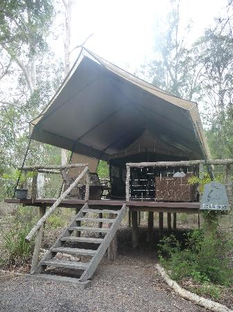 Paperbark C& Our Deluxe Tent - Kookaburra & Our Deluxe Tent - Kookaburra - Picture of Paperbark Camp ...