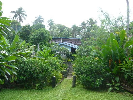 ‪‪Levuka Homestay‬: View of Garden and House‬