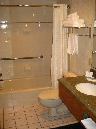 BEST WESTERN PLUS Silver Saddle Inn: Large bathroom, updated fixtures