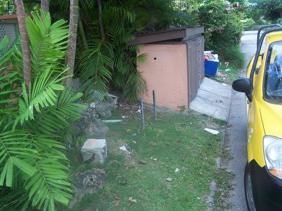 Travellers Palm: rubbish area near room door