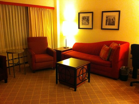 Residence Inn Chicago Downtown/Magnificent Mile: The Living Room in 1603