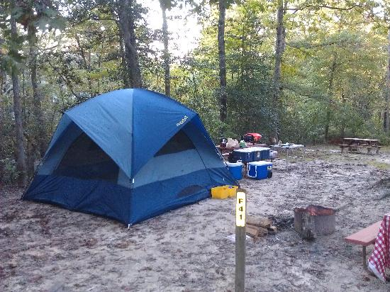 Williamsburg KOA Campground: Camp site