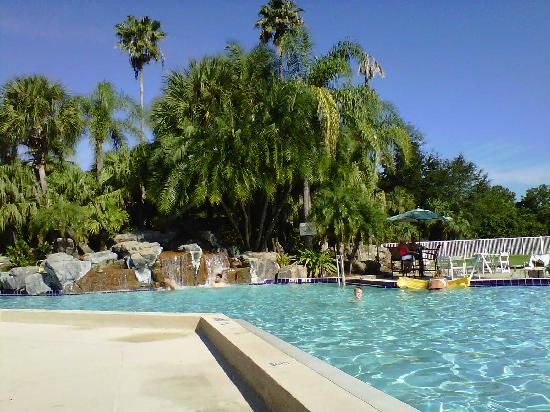 International Palms Resort & Conference Center: pool area