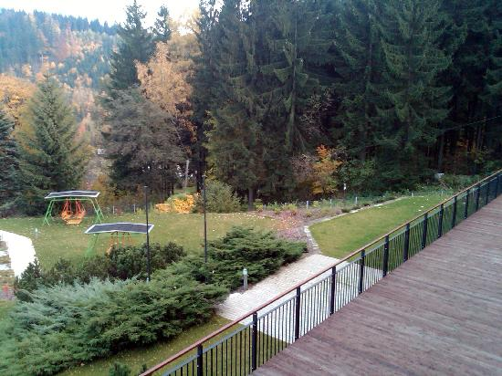 Beltine Forest Hotel: view from a room