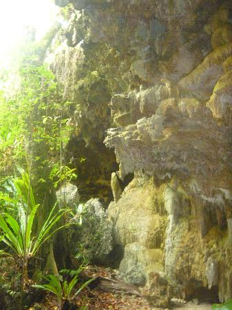 Atiu Homestay: Entrance to the caves