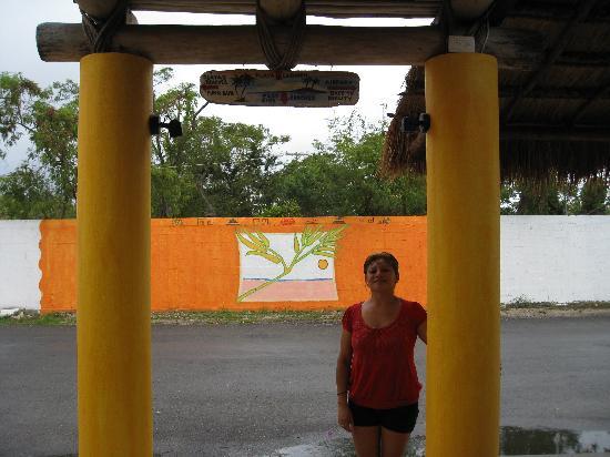 Casita de Maya: Jollie