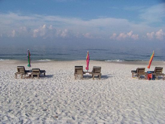 Driftwood Inn: The beach