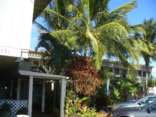 Kauai Palms Hotel: Kaua'i Palms Hotel