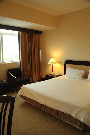 New Season Hotel: spacy room