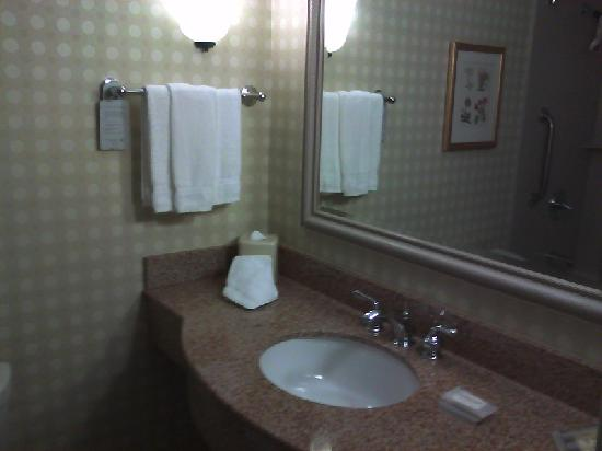 Hilton Garden Inn San Francisco Airport / Burlingame: clean bathroom